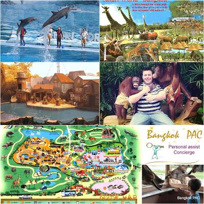 Safari-World-bangkok-collage-by-auswathai
