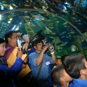Pattaya Underwater World